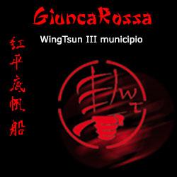 wingtsun III Municipio Roma