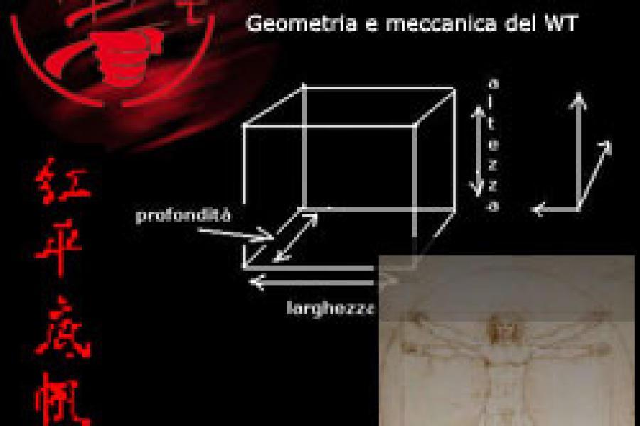 Geometria e meccanica del WT