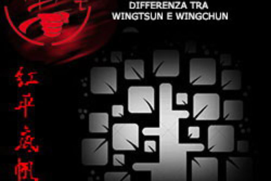 DIFFERENZA TRA WINGTSUN E WINGCHUN
